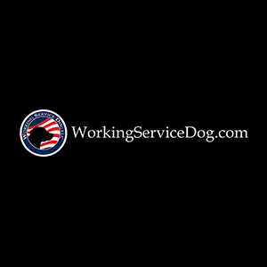 Working Service Dog